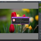 Topaz Labs Photoshop Plugins Bundle 2016 (ENG) (25.02.2016)